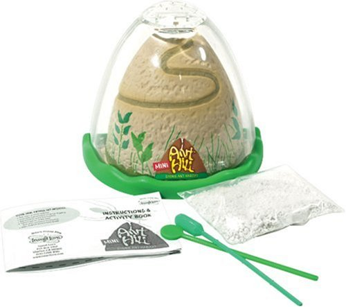 Insect Lore Ant Hill - Mini