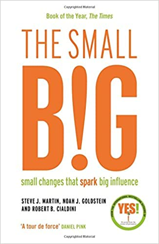 Book cover - The Small Big: Small Changes That Spark Big Influence