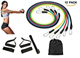 Resistance Bands Set, 5 Exercise Bands for Resistance Training, Physical Therapy, Home Workouts,12pcs Workout Bands Set with Door Anchor, Ankle Straps, Cushioned Handles and Carrying Bag Review