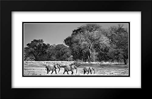 Follow The Leader 40x22 Black Modern Frame and Double Matted Art Print by Ortega, Xavier