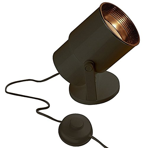 Indoor Led Accent Lighting in US - 7
