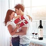 ERHIRY Wine Bottle Stopper Stainless Steel, Wine