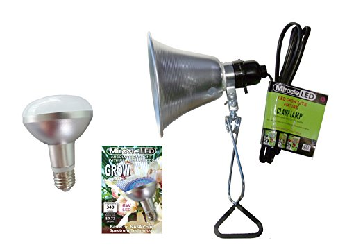 Nasa Led Light Plant in US - 4