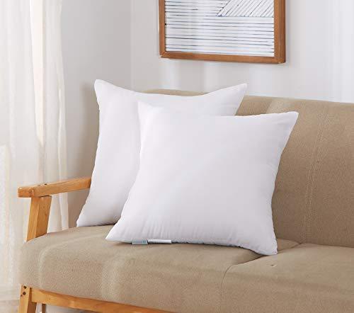 Acanva Decorative Throw Pillow Insert, Soft Hypoallergenic Cushion Form Euro Sham, 18