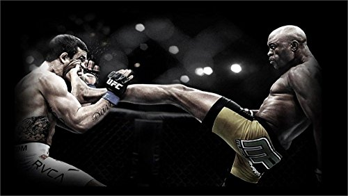 Tomorrow sunny UFC Fight 24x36 inch art silk poster Wall Dec