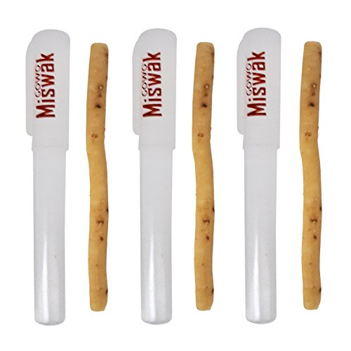 Original GOWO Miswak Sticks (3 Pack) 100% Natural Teeth Whitening Kit Natural Toothbrush Chemical Free Teeth Whitener and Breath Freshener Best Travel Gift For Hajj Umrah No Toothpaste Needed by GOWO (Image #1)