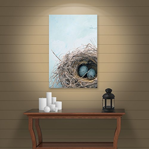 ArtWall 'Blue Nest' Gallery Wrapped Canvas Art by Elena Ray, 16 by 24-Inch