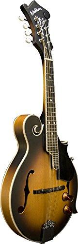 Brand New Washburn M3EK F-Style Mandolin Package, Tobacco Sunburst