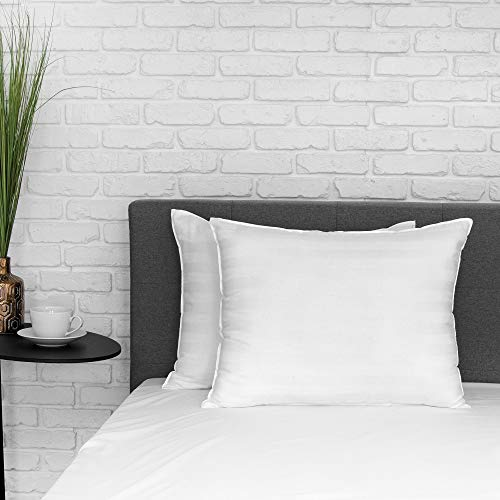 EcoPEDIC 250 Thread Count Cotton 2-Pack Bed Pillows, Standard, White