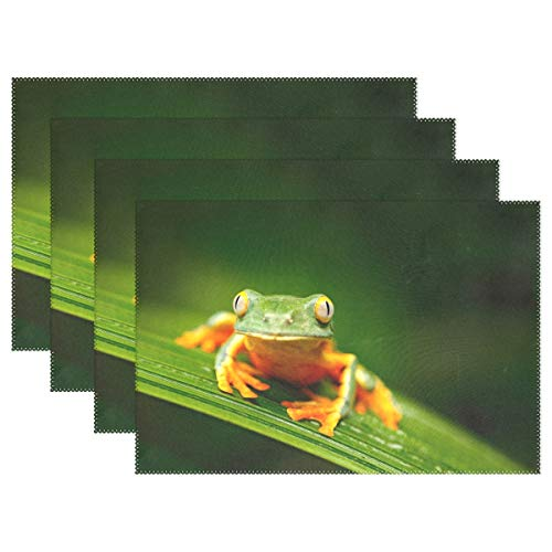 Mohado Set of 4 Placemats, Golden Eyed Leaf Frog Placemats for Dining Table, Heat-Resistant Placemats, Stain Resistant Washable Table Mats, Kitchen Table mats