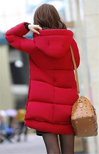 Quilting Warm Blouson Quilting Longues Femme Blouson awqRXdR