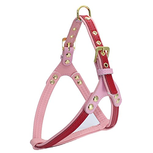 Dogs Kingdom Soft Leather Padded Dog Harness With Gold Stainless Steel Buckle For Small Medium Dogs Red One - Auburn In Stores Mall