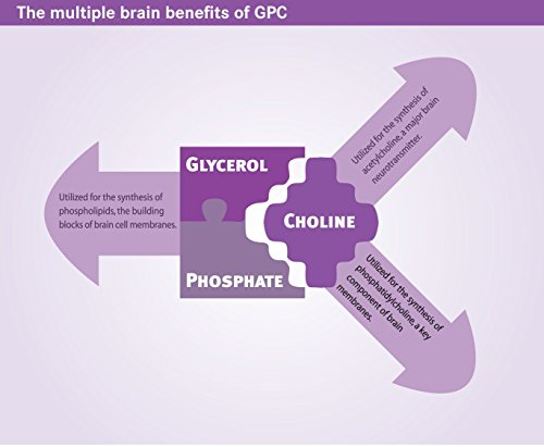 Alpha GPC, 300 mg, 90 Veggie Capsules SHARP GPC A Natural Source of Choline
