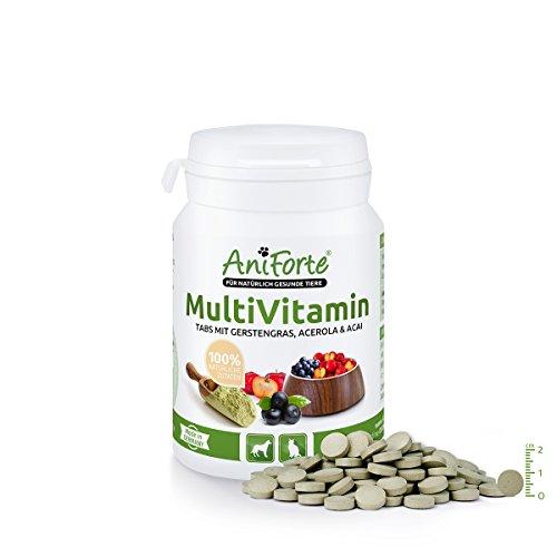 AniForte® MultiVitamin Tabs 100 Stk. Vitamin A B C D E K Provitamin A Gerstengras Acerola Acai- Naturprodukt für Hunde und Katzen