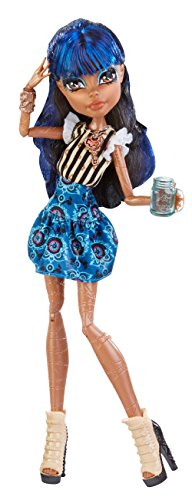 Monster High Coffin Bean Robecca Steam Doll (Monster High Dolls Basic Travel)