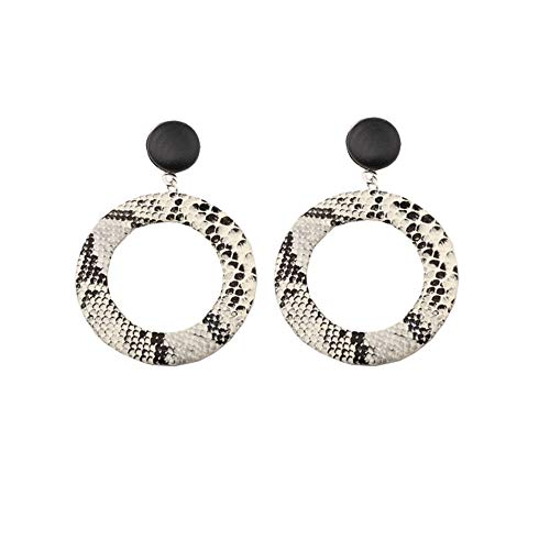 AKTAP Punk Snake Earrings Unique Hoop Geometric Circle Big Earrings Stud Dangle Earrings for Women Girls (Snake Earrings 2)
