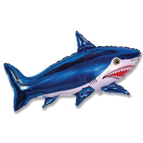 Shark 26