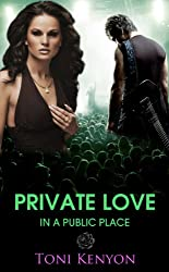 Private Love in a Public Place: (Rockstar Romance)