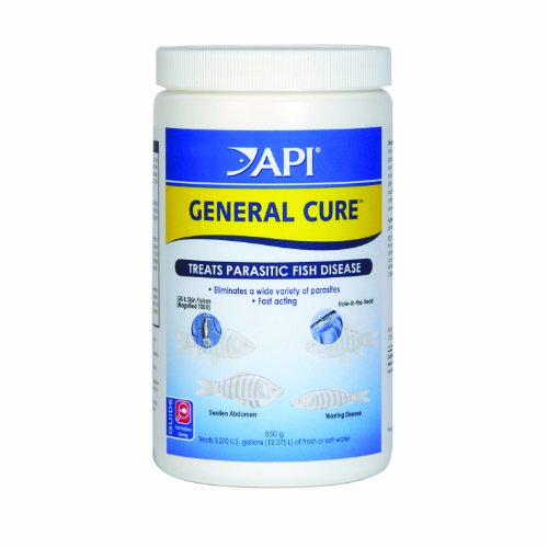 API GENERAL CURE Freshwater and Saltwater Fish Powder Medication