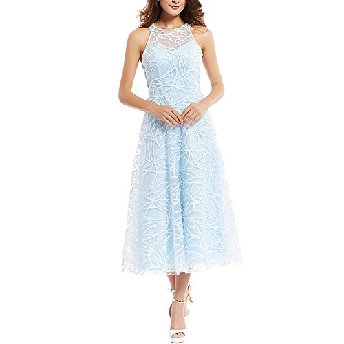 Clocolor Scoop Neck Zipper-Up A Line Evening Dress