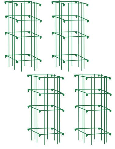 Gardener's Supply Company Lifetime Tomato Cages, Heavy Gauge, Set of 4 (Best Cherry Tomatoes For Hanging Baskets)