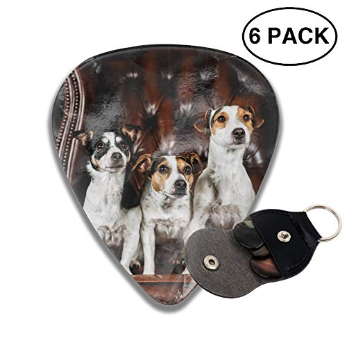 (Anniversary Gifts for Him Men - Unique Birthday Gift for Musician Husband Boyfriend Dad 6 PCS Animal Jack Russell Terrier Dogs Chair Guitar Pick)