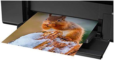 Epson L805 Impresora de inyección de Tinta Color WiFi - Impresora ...