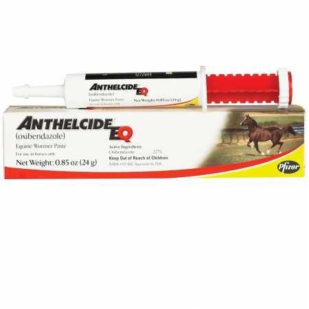 Paste Anthelmintic - Anthelcide Equine Paste (24 gm)