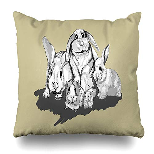 w Cover Beige Black Funny Rabbits Hamster Guinea Pig Smile Wildlife Band Cute Domestic Drawing Ears Farm Pillowcase Square Size 16 x 16 Inches Zippered Home Decor Cushion Case ()