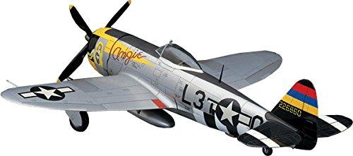 P-47d Fighter Thunderbolt (HASEGAWA 09140 1/48 P-47D Thunderbolt)