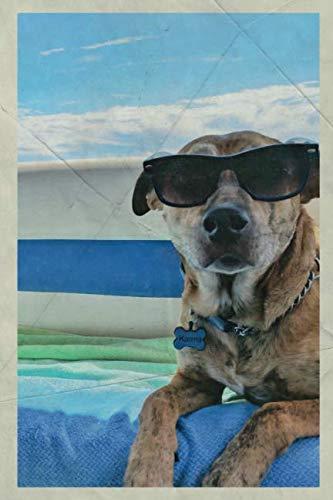 2020: Dog in sunglasses calendar