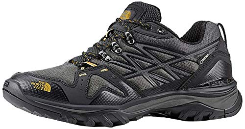 The North Face Men's Hedgehog Fastpack GTX Hiking Shoe