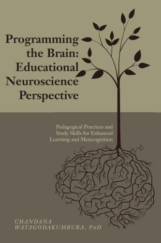 brain programming - 6