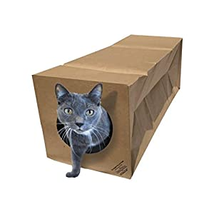 Dezi & Roo Hide and Sneak Collapsible Paper Cat Tunnel Made in The USA -Your Cat's New Favorite Toy - Fun Interactive Cat Toy - Activity Play Tunnel - Hidewaway 100
