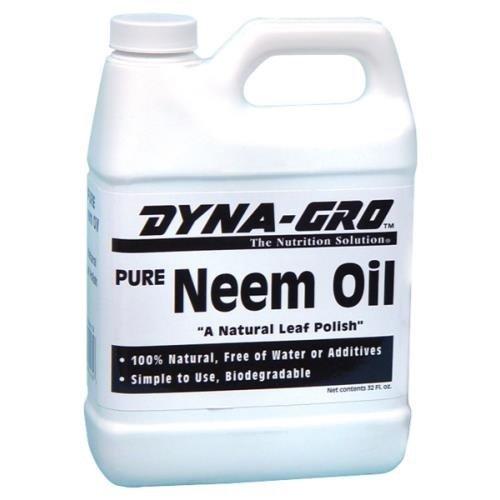 Get Neem Oil Extract on Amazon.com!
