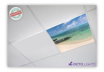Beach 005 2x2 Flexible Fluorescent Light Cover