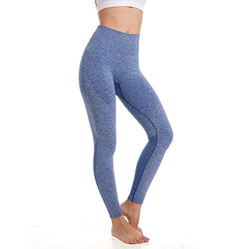Aoxjox Yoga Pants for Women High Waisted Gym Sport Ombre Seamless Leggings (Cobalt Blue Marl, Medium)