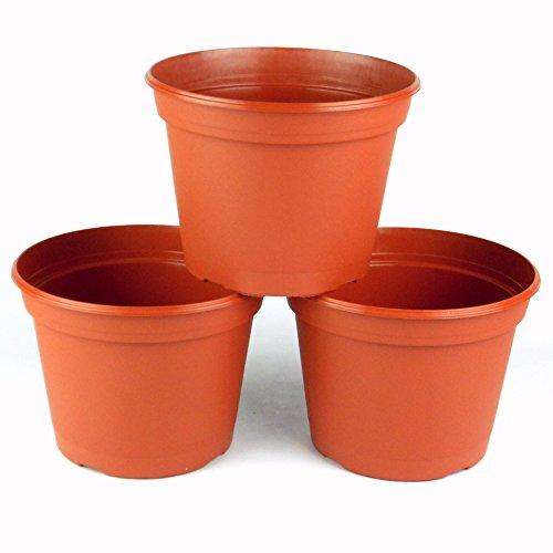 8inch terra cotta pot - 8