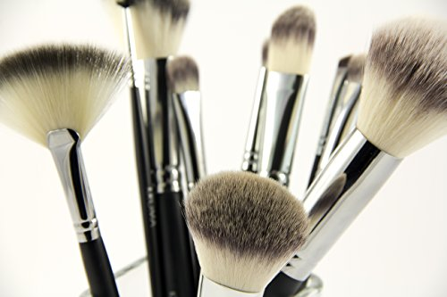 KROMA Complete Brush Set (with FREE Brush Cleaner, FREE Case & FREE Lesson!)