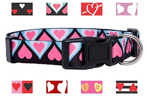 Native Pup Valentine's Day Heart Dog Collar (Medium, Blue and Pink -