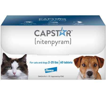 best flea meds for cats