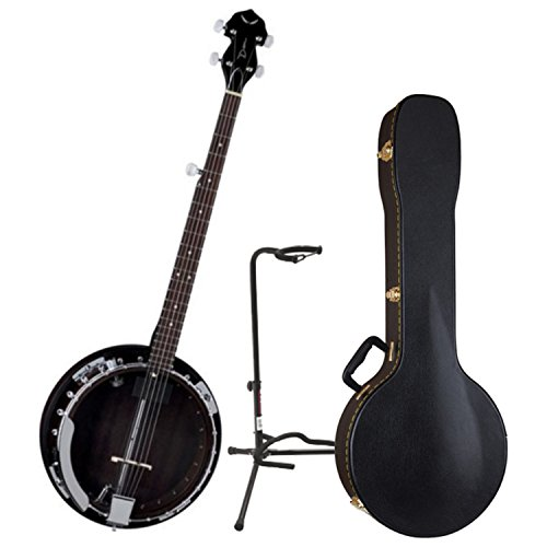 Electric Banjo (Dean BW2E Backwoods Electric Banjo w/Case and Stand)