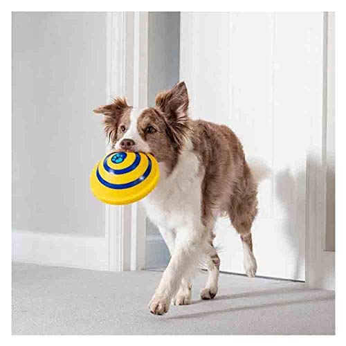 Dog Funny Rubber Toys, Sounding Disc Woof Glider Smart Aggressive Chewers Dog Toys for Medium Large Big Dog Puppy Entertainment (Multicolor)