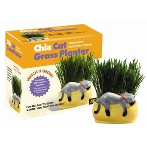 Chia Pet Snoozy Cat Grass - Pet Chia Grass