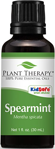 Plant Therapy Spearmint Essential Oil 30 mL (1 oz) 100% Pure, Undiluted, Therapeutic Grade