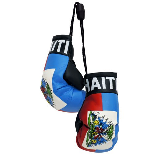flagsandsouvenirs Boxing Gloves HAITI
