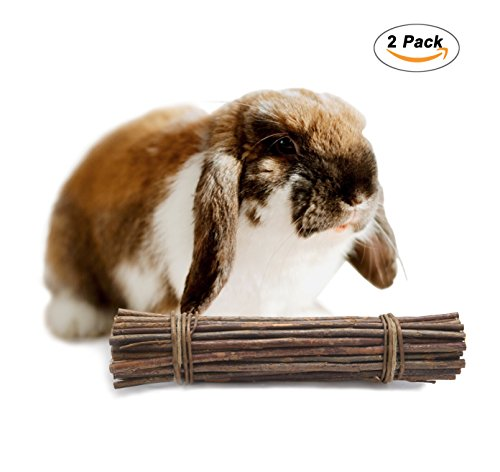Niteangel Natural Chew Sticks, Small Pet Chew Treat (Willow (Munch Sticks)