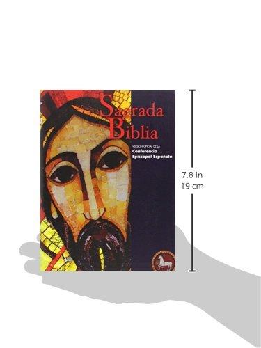 Sagrada biblia ed popular flexibook versin oficial de la sagrada biblia ed popular flexibook versin oficial de la conferencia episcopal espaola livros na amazon brasil 9788422017660 fandeluxe Gallery