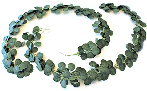 - Eucalyptus Garland Silver Dollar Leaves Artificial Vines Consisting of 2 Piece Set Measuring 12 Total Feet For Wedding Parties, Table Centerpieces, Mantle Displays, and Indoor Outdoor Home Decorations