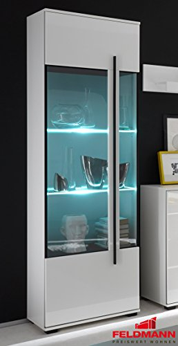 Standvitrine Glasvitrine mit LED-Beleuchtung 60cm 1-türig 440945 weiß